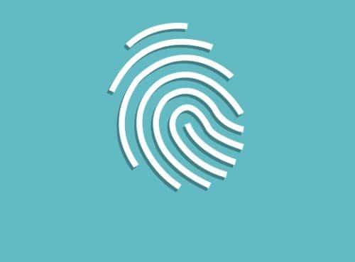 ThinkPod Agency, Design, Website Design, Digital Marketing, Social Media Management